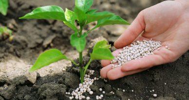 Gobierno del Perú construirá planta de fertilizantes
